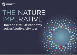 """""""New study explores how the circular economy can tackle biodiversity loss"""""""